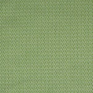 S2211 Endive Greenhouse Fabric