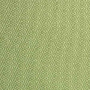 S2246 Lawn Greenhouse Fabric
