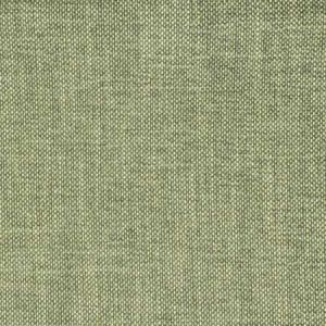 S2354 Eucalyptus Greenhouse Fabric