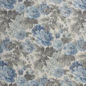 S2491 Chambray Greenhouse Fabric