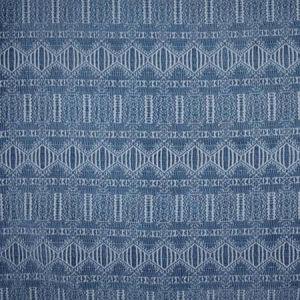 S2496 Indigo Greenhouse Fabric