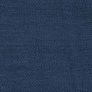 S2511 Blue Greenhouse Fabric