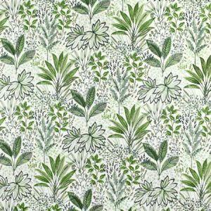 S2679 Fern Greenhouse Fabric