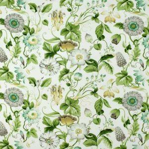 S2713 Green Tea Greenhouse Fabric