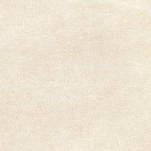 S2892 Cream Greenhouse Fabric
