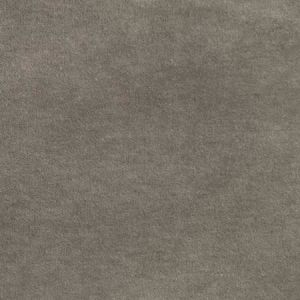 S2976 Ash Greenhouse Fabric