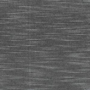 SASSAFRAS 1 COAL Stout Fabric