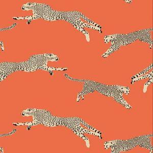 SC 0002 WP88449 LEAPING CHEETAH Clementine Scalamandre Wallpaper