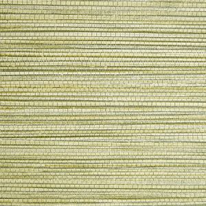 SC 0004 WP88441 WILLOW WEAVE Grass Scalamandre Wallpaper