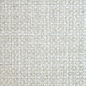 SC 0008 WP88443 JUTE Silver Dollar Scalamandre Wallpaper
