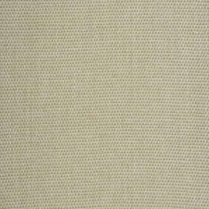 SILTSTONE BASKET Gold Dust Fabricut Fabric