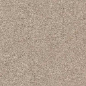 V500 Sandstone Charlotte Fabric