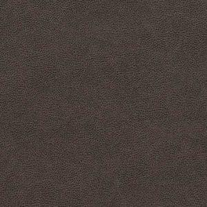 V501 Charcoal Charlotte Fabric