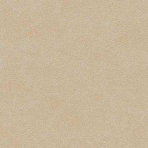 V502 Sand Dollar Charlotte Fabric