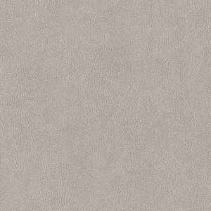 V503 Platinum Charlotte Fabric