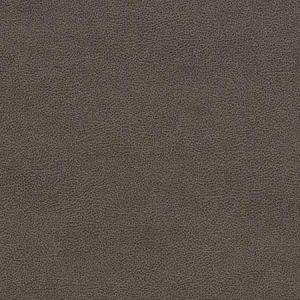 V504 Gravel Charlotte Fabric