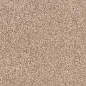 V505 Cashew Charlotte Fabric