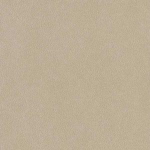 V506 Linen Charlotte Fabric