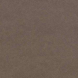 V507 Ash Charlotte Fabric