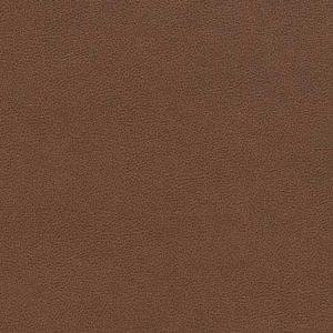 V509 Pecan Charlotte Fabric