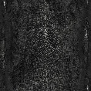 WH0 0003 3326 PRECIEUX Noir Scalamandre Wallpaper