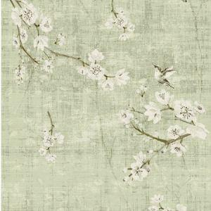 WNM 1055BLOS BLOSSOM FANTASIA Celadon Scalamandre Wallpaper