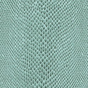 WSM 0004BOAC BOACONDA Peacock Scalamandre Wallpaper