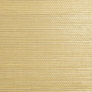 WTW EG438 SISAL Ecru Scalamandre Wallpaper