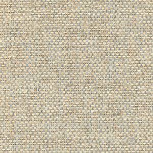 WTW GT3928 ORGANIC PAPERWEAVE Cottage Scalamandre Wallpaper