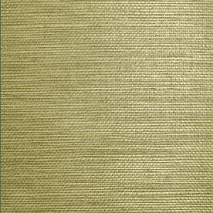WTW SG5618 NATURAL SISAL Celery Scalamandre Wallpaper