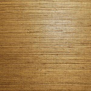 WTW SG5621 NATURAL SISAL Olive Scalamandre Wallpaper