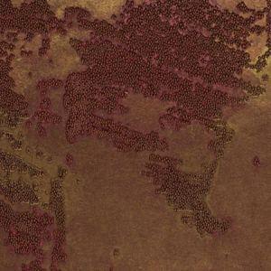 WUE2048 CORVO BEADS  Winfield Thybony Wallpaper
