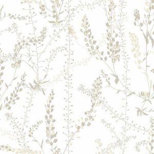 WV1785 Bladranker Botanical Beige Brewster Wallpaper