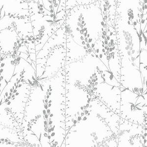 WV1786 Bladranker Botanical Grey Brewster Wallpaper