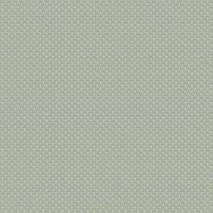 04679 Silver Trend Fabric