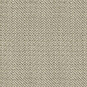NOTTINGHAM PALACE Dove Fabricut Fabric