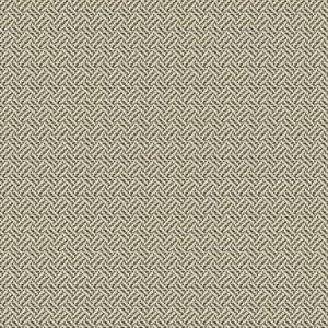 NOTTINGHAM PALACE Coal Fabricut Fabric