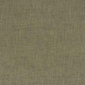 ZEAL Fossil Fabricut Fabric