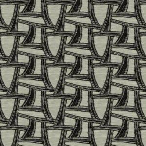 ARKAODA Raven Fabricut Fabric
