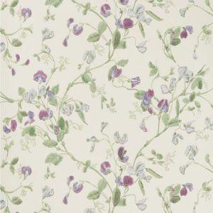 100/6030-CS SWEET PEA Violet Cole & Son Wallpaper