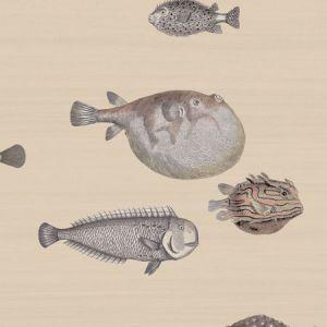 114/16033-CS ACQUARIO Taupe Cole & Son Wallpaper