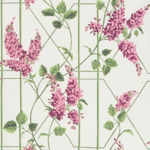 115/5013-CS WISTERIA Magenta Green White Cole & Son Wallpaper