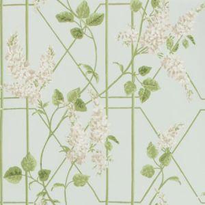 115/5014-CS WISTERIA Stone Olive Duck Egg Cole & Son Wallpaper