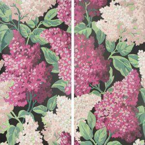 115/15045-CS LILAC GRANDIFLORA Magenta Blush Charcoal Cole & Son Wallpaper