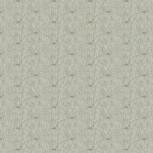 RASHNU Granite Fabricut Fabric