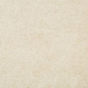 Kravet Cloud Burst Oyster Fabric