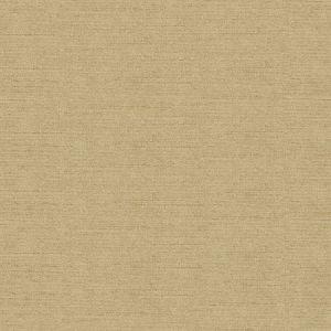 Kravet Vetro Golden Fabric