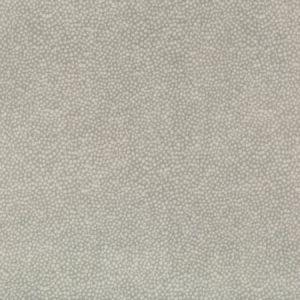 Kravet Pebbledot Stone Fabric