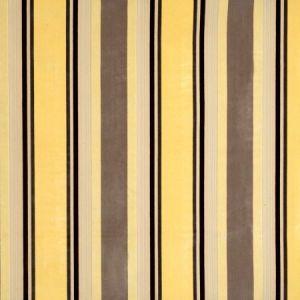 Vervain Gene Stripe Yellow Maize Fabric