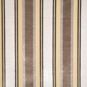 Vervain Gene Stripe Platinum Fabric